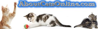 About Cats Online
